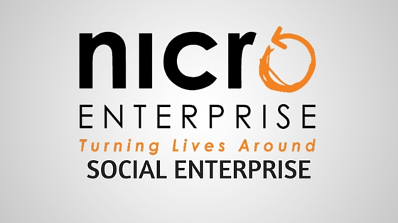 social enterprise nicro enterprise